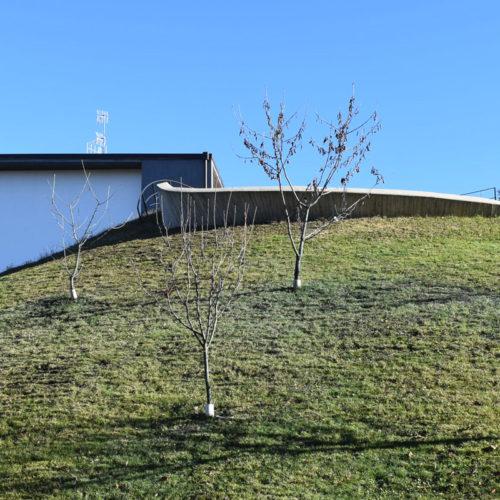 arch.giuseppe passaro slide1
